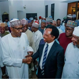 Don't expect change under Buhari in 2020 - Shehu Sani tells Nigerians