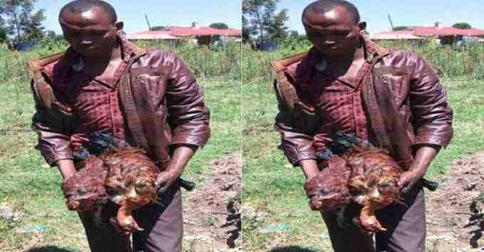 "How 33-Year-Old Man ""Rapes"" His Neighbor's Two Hens To Death"