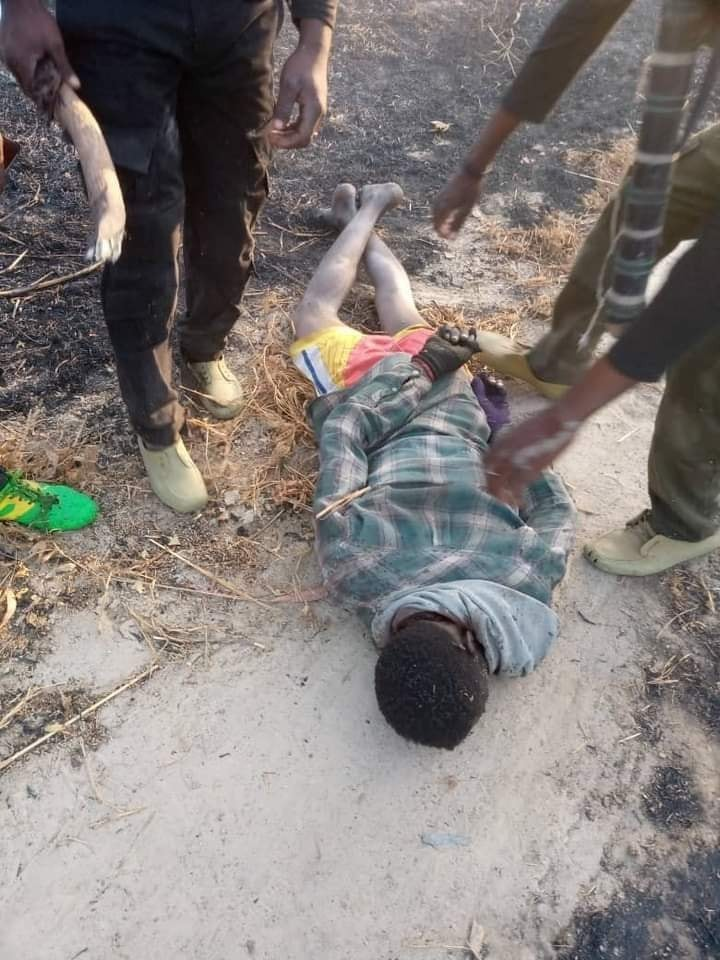ZabarmariMassacre: Photos of the rice farmers slaughtered by Boko Haram in Borno (Graphic)
