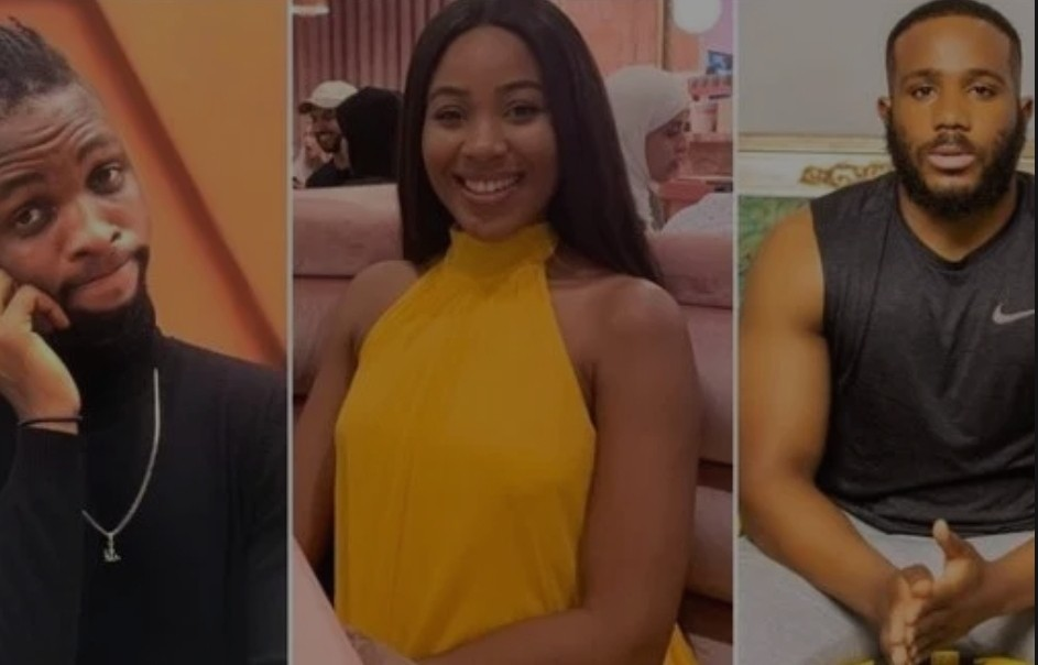 Laycon Rubbed His Mysterious Ring On Kiddwaya, Nothing Is Normal' – Erica Fans Says Amidst Kiddrica Breakup