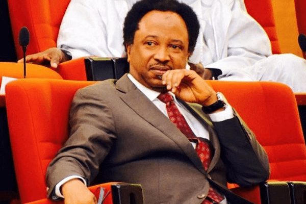 """Northern Governors Can See The Location Of Their Real Problem"" – Senator Shehu Sani"