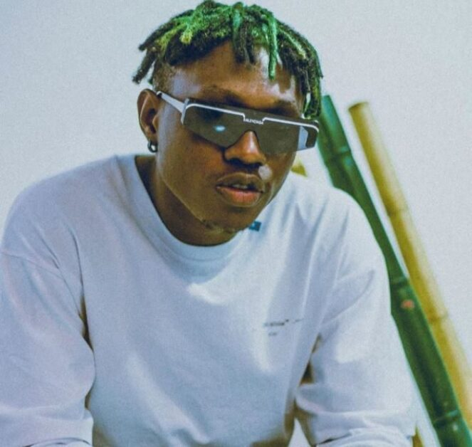 """""""I Will Embezzle Money If I Become The President of Nigeria – Singer, Zlatan Ibile"""