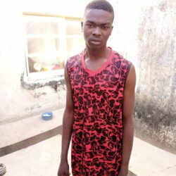 Man cuts off private part of a 6-year-old girl for ritual in Bauchi