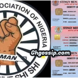 List Of Celebrities That Joined Stingy Men Association Nigeria- Photos Of ID Cards