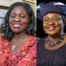 Njide Okonjo-Udochi, sister to Ngozi Okonjo-Iweala, becomes first black female to emerge 'Physician of the Year' in the US